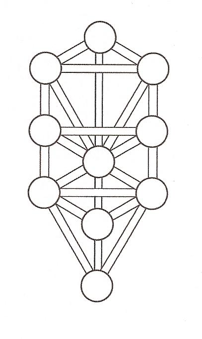 tree of life diagram coal tree of life diagram #15